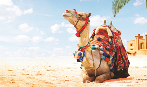 туры в египет из екатеринбурга
